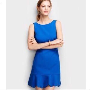 J. Crew Royal Blue Scalloped Drop Hem Dress